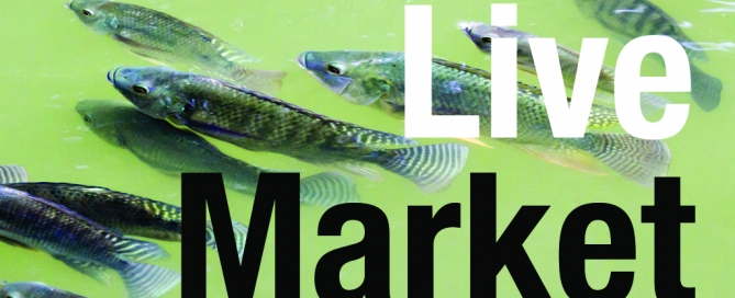 ATA LiveMarket